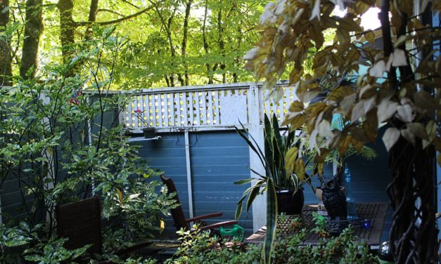 What's in Your Backyard? And What can you do about it?